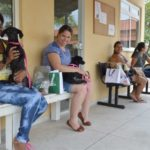 Castrações: Centro de Controle de Zoonoses realizou em 2018 mais de 560 castrações em cães de gatos, na maioria dos casos em animais fêmeas - Evandro Freitas – Secom/VR