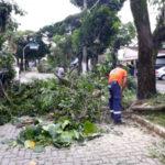 Temporal: Em apenas uma hora, choveu 52,6 milímetros na cidade - Divulgação