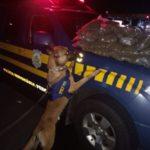 Jovem carregava droga que foi localizada com ajuda de cães da PRF (crédito PRF)
