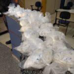 PMs apreendem quase dois mil pinos de drogas (crédito PC)