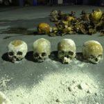 Crânios foram encontrados durante inspeção em depósito de lixo em Barra Mansa