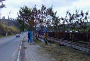 Saae faz serviços de limpeza urbana em Barra Mansa