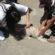 Campanha vacina cães e gatos em Volta Redonda