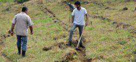 Prefeitura de Barra Mansa realiza evento de incentivo à preservação ambiental