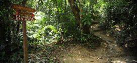 Rede de trilhas de 18 mil km começa a ser construída no Brasil