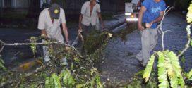 Equipes da prefeitura desobstruíram mais de cinquenta ruas em menos de 24h