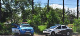 Polícia Ambiental faz operação em VR