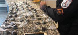 Dupla é presa com 66 sacolés de maconha, em Barra Mansa