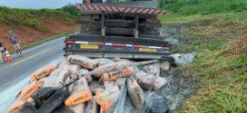 Caminhão carregado de cimento capota na BR-393 em Vassouras