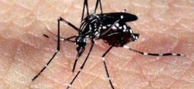 Região do Surubi receberá mutirão contra Dengue