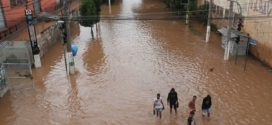 Volume de chuvas pode causar aumento de casos de leptospirose