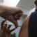 Quatis reforça chamado para vacina contra a febre amarela
