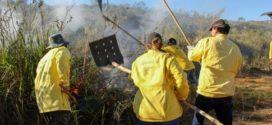 Guarda Municipal de Quatis recebe abafadores manuais e bombas costais