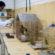 Zoológico de Volta Redonda acolheu 438 animais nos últimos sete meses
