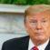 Donald Trump exige prisão de manifestantes nos EUA