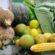 Paróquia São Sebastião promove campanha de arrecadação de alimentos