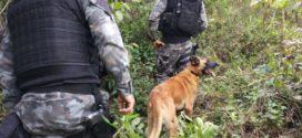 28º BPM faz balanço de  operação em Volta Redonda