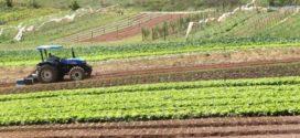 Deputado destina R$ 13,3 milhões para ampliação da agropecuária no Estado