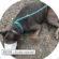 Vaquinha online é criada para ajudar cachorra que teve pata mutilada