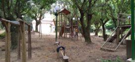Obras no Horto Florestal de Barra do Piraí estão em fase de acabamento