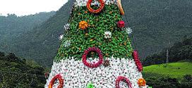 Vila Noel será aberta neste domingo em Angra dos Reis