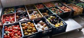 Banco de Alimentos quer ampliar parcerias com empresas em Volta Redonda