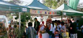 Feira em Paraty oferece produtos orgânicos