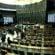 Câmara vota projeto de lei que pode reduzir indenização dos jogadores de futebol