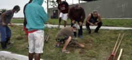 Plantio de mudas fortalece atividade terapêutica no Centro de Lazer em Barra Mansa