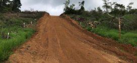Abertura de estrada clandestina e desmatamento são localizados em Paraty após denúncia