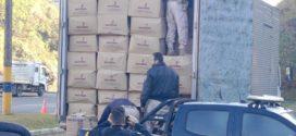 PRF apreende contrabando de cigarros avaliado em R$ 2,5 milhões