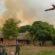 Incêndios no Pantanal deixam destruição e prejuízo aos pecuaristas