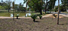 Obras na Lagoa do Jardim das Acácias entram em fase de conclusão em Porto Real