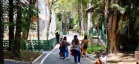 Esgotadas as vagas para visitação no Zoo de VR neste fim de semana