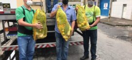Sicomércio-VR distribui 250 cestas do ´Mesa Brasil´