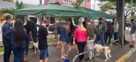 VR realiza feira de adoção animal na Vila Santa Cecília