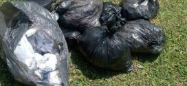 PM apreende 6 mil pinos de cocaína em Resende
