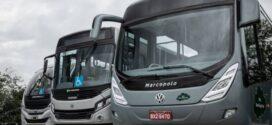 Volkswagen tem 10 mil ônibus inspecionados em parceria com encarroçadoras